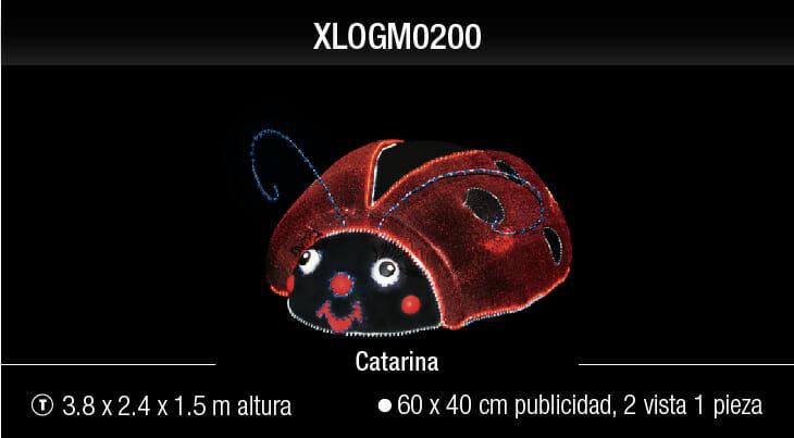 blachere catarina